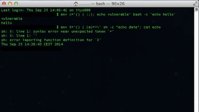 bash-640x360 2